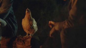 GEICO TV Spot, 'Free-Range Chicken' Song by Roy Orbison