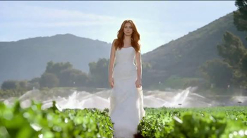 Wendy's Salads TV Spot, 'Wedding' - 7241 commercial airings