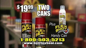 Flex Seal Colors TV Spot, 'Transform and Protect' - Thumbnail 8