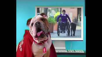 Mattress Discounters TV Spot, 'Good Deed Dogs: Helping People'