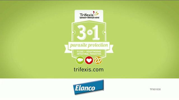 Elanco Trifexis TV Spot, 'The Perfect Relationship' - Thumbnail 9