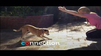 PETCO TV Spot, 'Connect' - Thumbnail 9