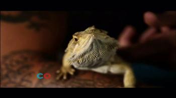 PETCO TV Spot, 'Connect' - Thumbnail 6