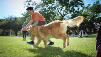Purina Pro Plan P5 Dog Training App, 'Animal Planet: Energetic Sundance' - Thumbnail 10