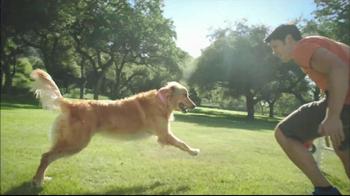 Purina Pro Plan P5 Dog Training App, 'Animal Planet: Energetic Sundance' - Thumbnail 3