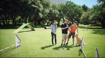 Purina Pro Plan P5 Dog Training App, 'Animal Planet: Energetic Sundance' - Thumbnail 4