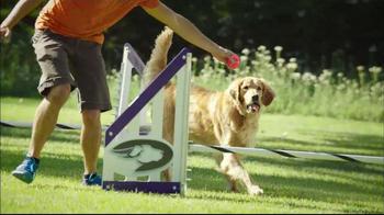Purina Pro Plan P5 Dog Training App, 'Animal Planet: Energetic Sundance' - Thumbnail 6