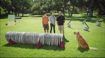 Purina Pro Plan P5 Dog Training App, 'Animal Planet: Energetic Sundance' - Thumbnail 7