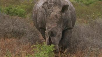 South Africa TV Spot, 'Bucket List' - Thumbnail 10