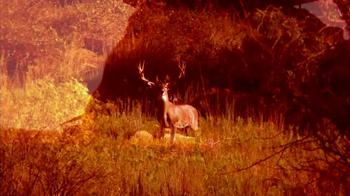Montgomery Properties Ranch TV Spot, 'MPR Hunts' - Thumbnail 6