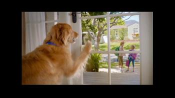 PetSmart Labor Day Sale TV Spot, 'Hills Science Diet' - Thumbnail 1