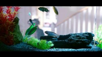 PetSmart Fall Savings Sale TV Spot, 'All Things Aquatic' - Thumbnail 2