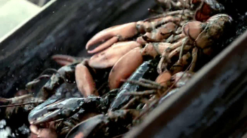 Joe's Crab Shack Southern Fried Maine Lobster TV Spot - Thumbnail 1