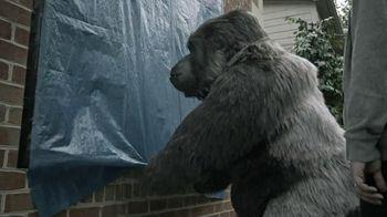 Gorilla Tape TV Spot, 'Gorilla Helps Hang a Tarp'
