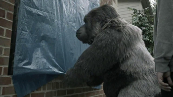 Gorilla Tape TV Spot, 'Gorilla Helps Hang a Tarp'
