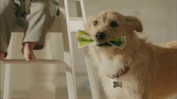 Kohl's Cash TV Spot, 'Dog Ate It' - Thumbnail 4