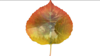 Air Wick TV Spot, 'National Park Collection: Fall 2013' - Thumbnail 1