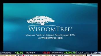 WisdomTree TV Spot, 'HYZD: High Yield Bond Zero Duration ETF' - Thumbnail 8