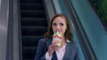 Smucker's Fruit-Fulls TV Spot, 'Orchard Paintings' - 409 commercial airings