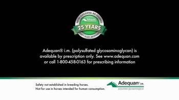 Adequan i.m. TV Spot, 'Winning Formula' - Thumbnail 8