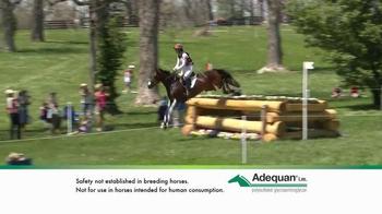 Adequan i.m. TV Spot, 'Winning Formula' - Thumbnail 4