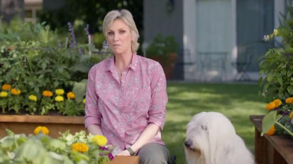 Petsmart Tv Commercial Don T Mess With This Lady Feat