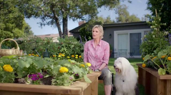 PetSmart TV Spot, 'Don't Mess With This Lady' Feat. Jane Lynch - Thumbnail 1
