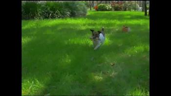 Catch A Critter TV Spot, 'Fun All Day' - Thumbnail 5