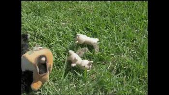 Catch A Critter TV Spot, 'Fun All Day' - Thumbnail 6