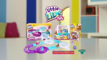 Little Live Pets TV Spot, 'Little Mice' - Thumbnail 10