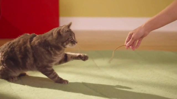 Friskies Pull 'n Play TV Spot, 'Playhouse' - Thumbnail 7