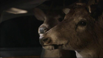 NHTSA TV Spot, \'Stop Texts: Driving Deer\'