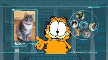 The Shelter Pet Project TV Spot, 'Harlow and Sorullo' Featuring Garfield