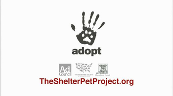 The Shelter Pet Project TV Spot, 'Harlow and Sorullo' Featuring Garfield - Thumbnail 10