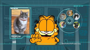 The Shelter Pet Project TV Spot, 'Harlow and Sorullo' Featuring Garfield - Thumbnail 6