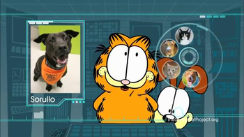 The Shelter Pet Project TV Spot, 'Harlow and Sorullo' Featuring Garfield - Thumbnail 8