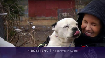 Humane Society TV Spot, 'Ending Animal Cruelty' Featuring Kaley Cuoco - Thumbnail 10