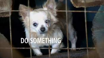 Humane Society TV Spot, 'Ending Animal Cruelty' Featuring Kaley Cuoco - Thumbnail 5