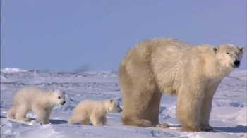 World Wildlife Fund TV Spot, 'Parents' - Thumbnail 3
