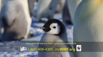 World Wildlife Fund TV Spot, 'Parents' - Thumbnail 9