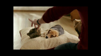 PetSmart Stock Up and Save TV Spot, 'Cosequin' - Thumbnail 1