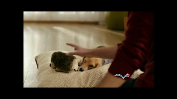 PetSmart Stock Up and Save TV Spot, 'Cosequin' - Thumbnail 2