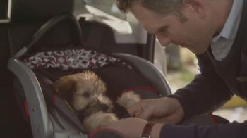 Subaru TV Spot, 'Dog Approved: Kids' - 84 commercial airings