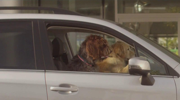 Subaru TV Spot, 'Dog Approved: Kids' - Thumbnail 4