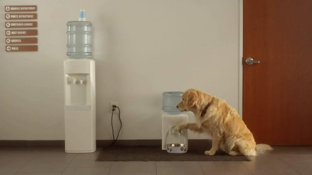 Subaru Forester Commercial Song >> Subaru TV Commercial 'Dog Tested, Dog Approved' - iSpot.tv