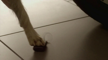 Subaru TV Spot 'Dog Tested, Dog Approved' - Thumbnail 7