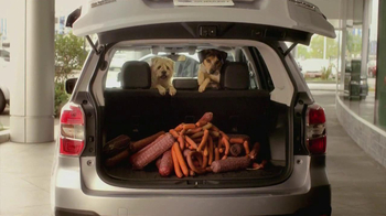 Subaru TV Spot 'Dog Tested, Dog Approved' - Thumbnail 8