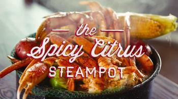 Joe's Crab Shack Spicy Citrus Steampot TV Spot - Thumbnail 9