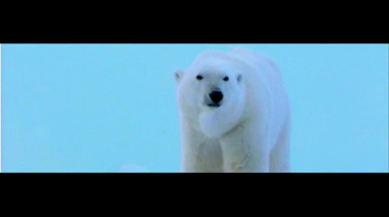 International Fund for Animal Welfare TV Spot - Thumbnail 2
