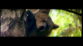 International Fund for Animal Welfare TV Spot - Thumbnail 3